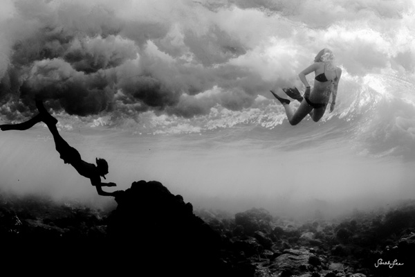 Underwater Photography by Sarah Lee-12