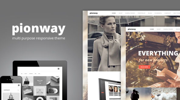 pionway-multi-purpose-responsive-wordpress-theme