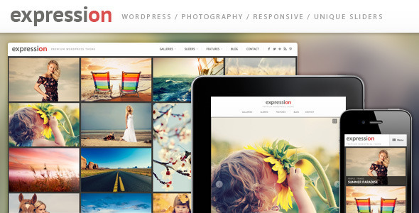 12 New WordPress Photography Themes