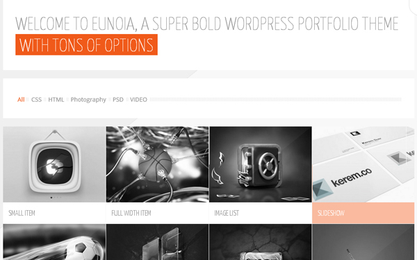 Portfolio WordPress Themes 01