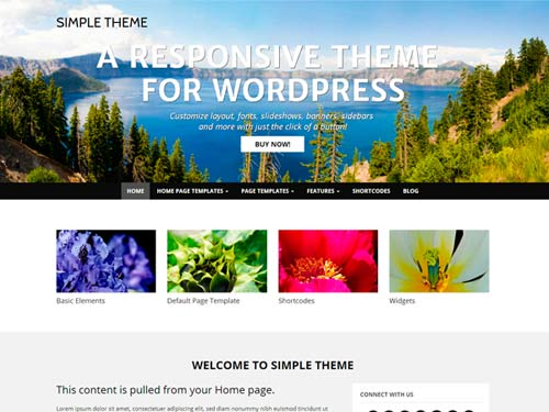 WP-Simple-theme