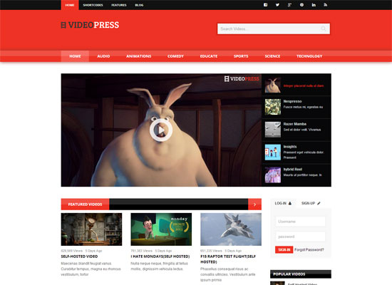 VideoPress-Self-Hosted-Video-Streaming