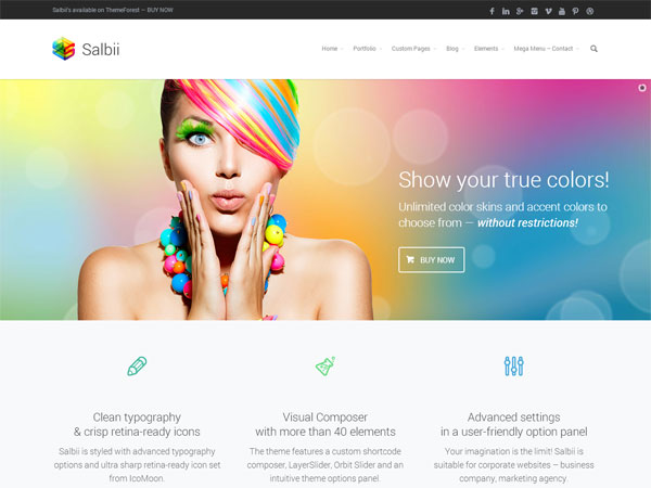 Salbii-responsive-WordPress-theme