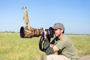 meerkats-and-photographer-1