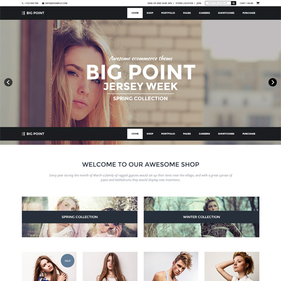 Big-Point-Multi-Purpose-Ecommerce-Theme
