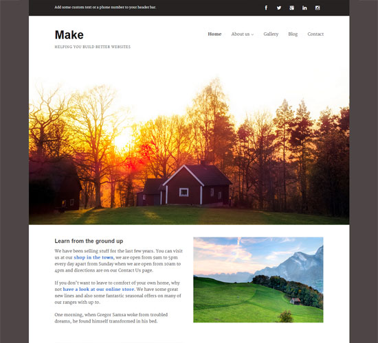 free-wordpress-theme-make
