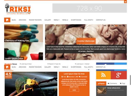 Triksi-Magazine-WordPress-Theme
