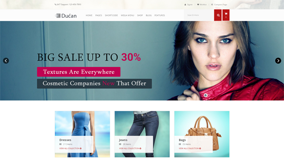 wordpress-ecommerce-themes Ducan