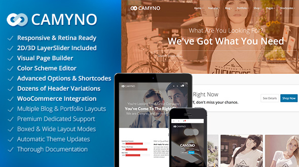 Camyno-Business-WordPress-Themes