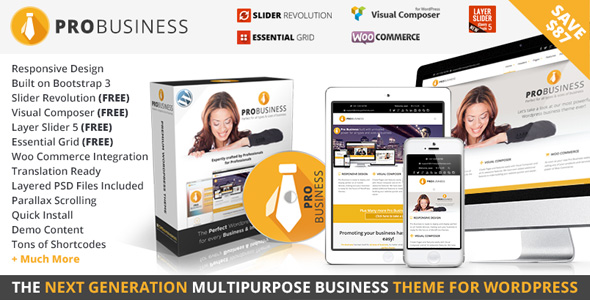 pro-business-responsive-themes-2