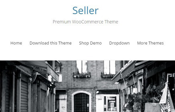 seller-free-woocommerce-wordpress-theme