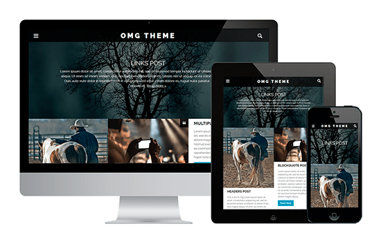 OMG wordpress-themes