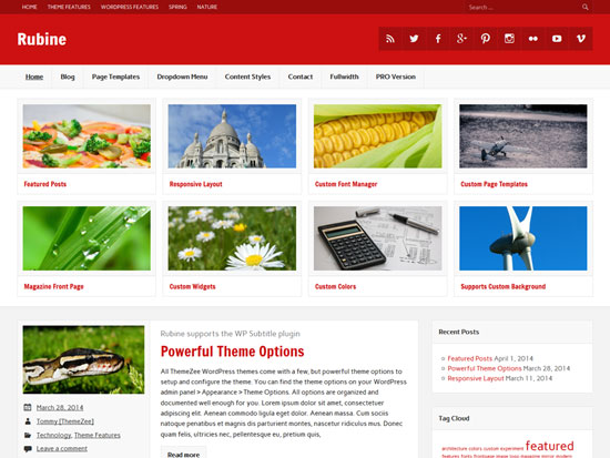 2015-Free-Magazine-WordPress-Themes-Rubine-Lite