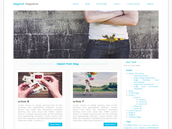 Free-Magazine-WordPress-Themes-2015-Beyond