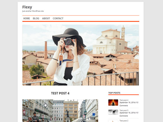Free-Magazine-WordPress-Themes-2015-Flexy