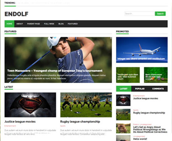 Free-Magazine-WordPress-Themes-2015-endolf