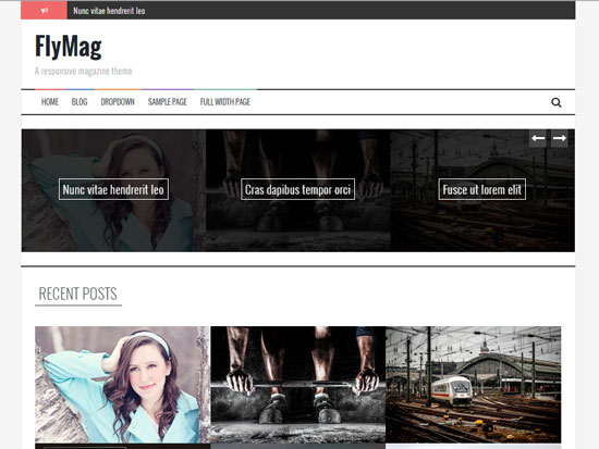 Free-Magazine-WordPress-Themes-2015-flymag