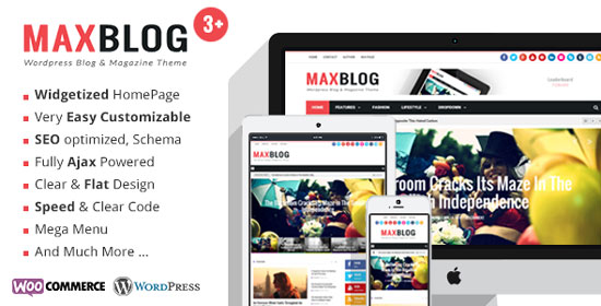 magazine-wordpress-themes-2015-review-magazine