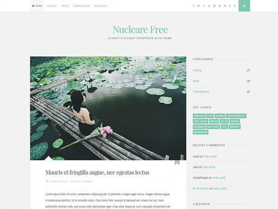 free-wordpress-themes-april-2015-Nucleare