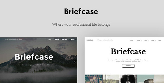 Briefcase-Bold-Minimal-Portfolio-WordPress-Themes-2015