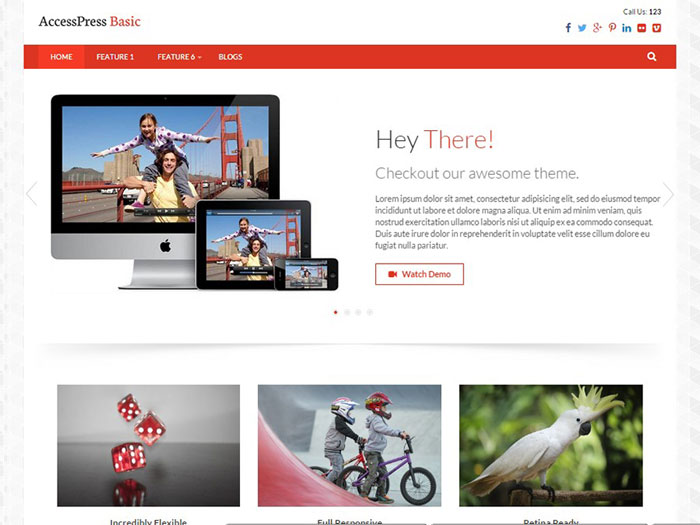 Free-WordPress-Themes-2015-June-Accesspress-Basic