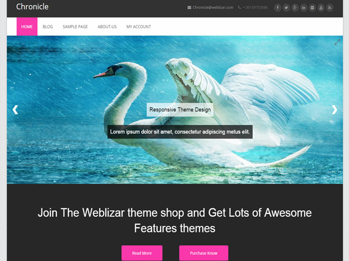 Free-WordPress-Themes-2015-June-Chronicle