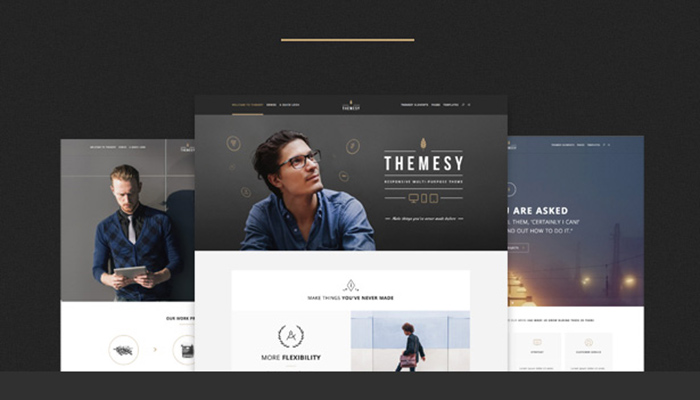 Responsive-Multi-Purpose-WordPress-Themesy
