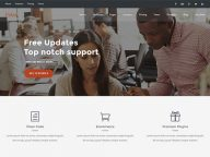 31 Best Free and Premium WordPress Themes of August 2015