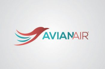 Airline Logo Designs 28