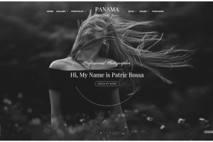 Panama Photography wordpress slider themes