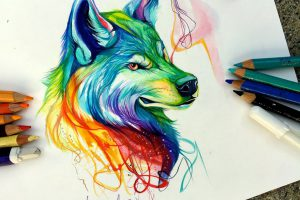 Pencil And Marker Illustrations of Wild Animal Spirits By Katy Lipscomb 1