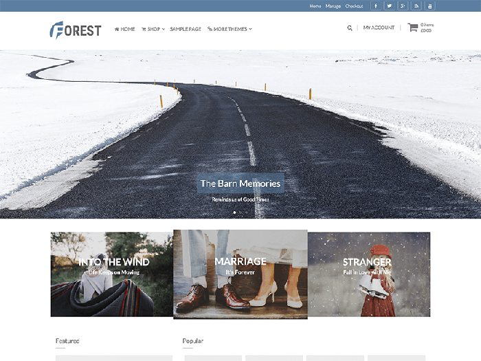 Forest free simple wordpress theme