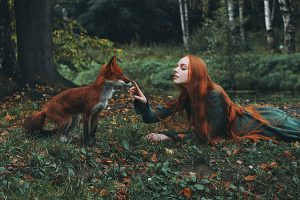 Foxes by Alexandra Bochkareva