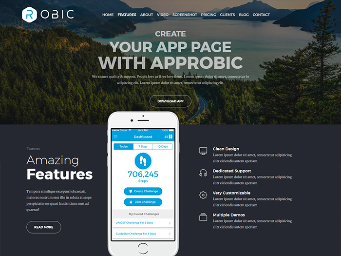 Landing Page WordPress Themes Robic