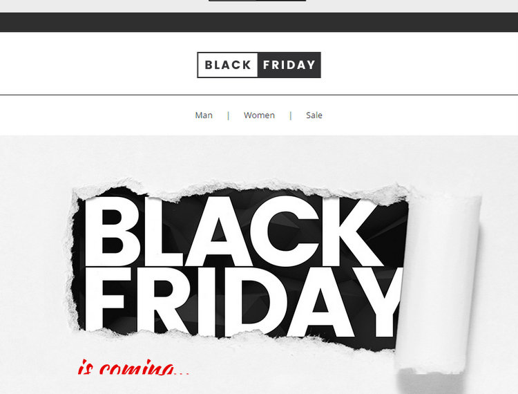 The Best Black Friday Email Template To Increase Black Friday 2016 Sales