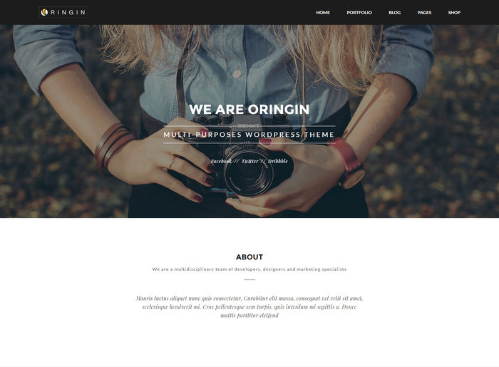 oringin-wordpress-portfolio-theme