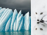 These 20 Iceland Photos You Won't Believe Are From This Planet