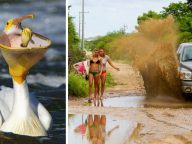 40 Hilarious Photographs Show Scenes Captured One Second Before Disaster