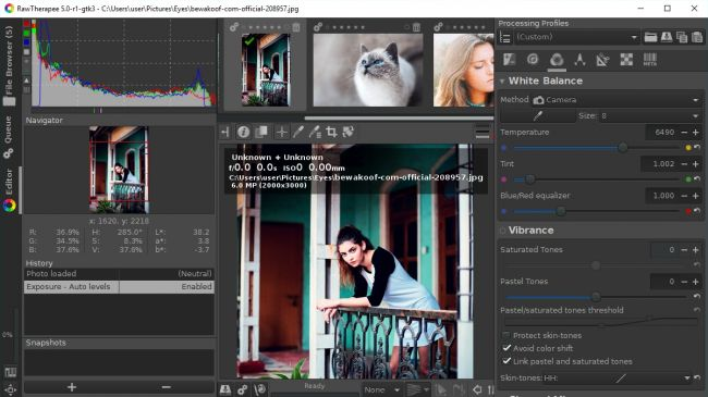 Free Lightroom Alternative RawTherapee