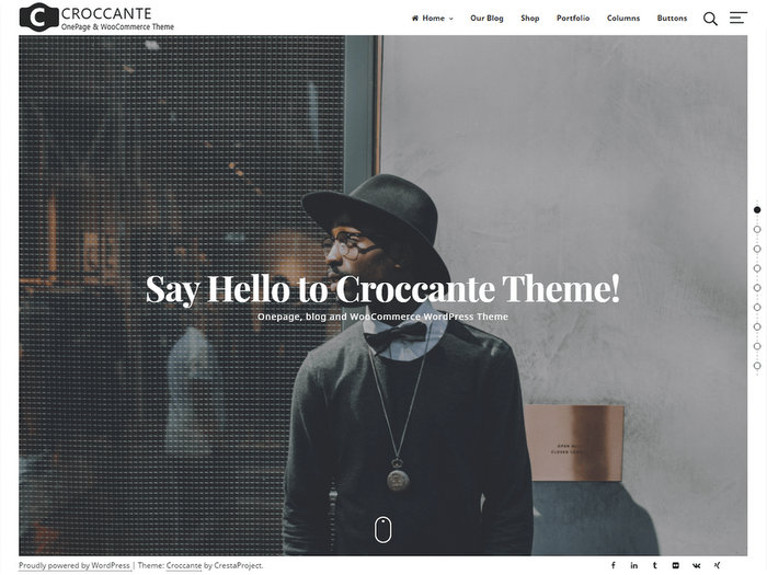 Free Portfolio WordPress Themes Croccante