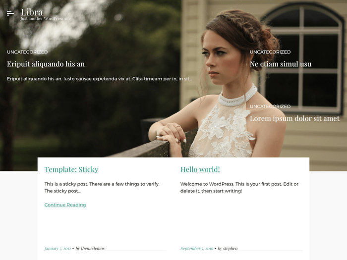 Free Portfolio WordPress Themes Libra