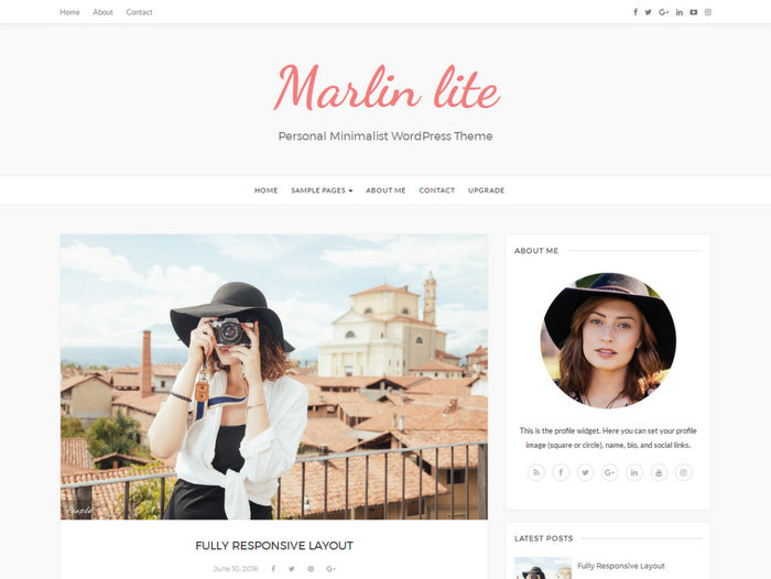Free Portfolio WordPress Themes Marlin lite