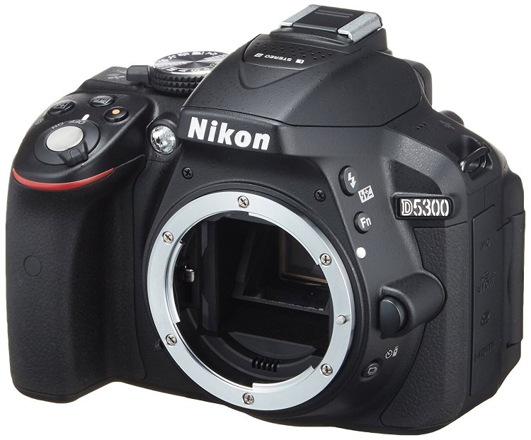 Nikon D5300 cheap good cameras