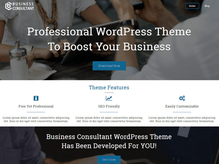 Business Consultant Free WordPress Theme