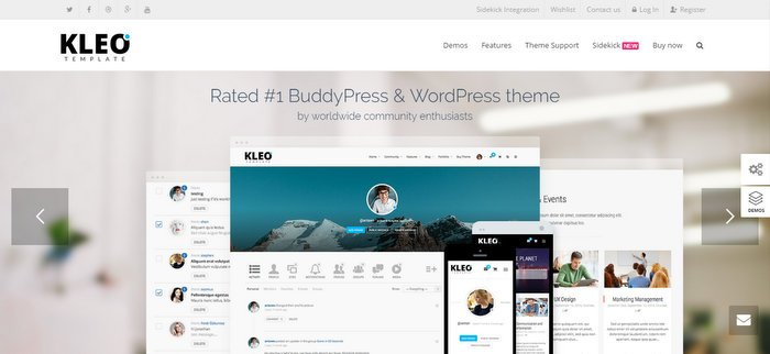 33 Best Free and Premium BuddyPress Themes 2018