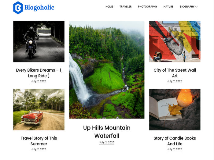 Blogoholic Free WordPress Theme