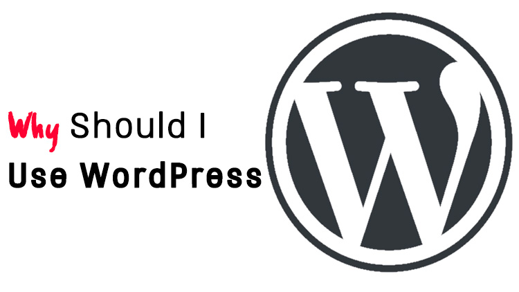 Why Should I Use WordPress for My Website